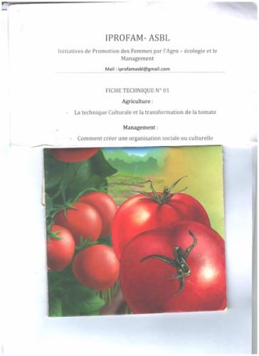 FICHE TECHNIQUE DE RENFORCEMENT DES CAPACITES DES ACTEURS