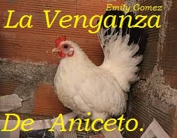 La Venganza De Aniceto