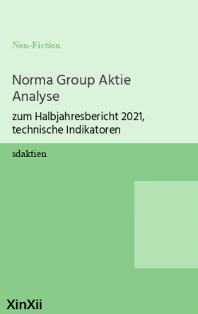 Norma Group Aktie Analyse