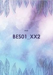 BES01 Beschaffung und Einkauf (SGD/ILS)