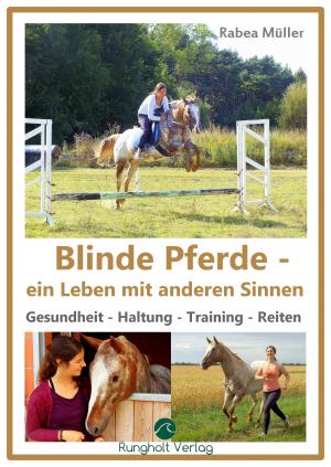 Blinde Pferde - ein Leben mit anderen Sinnen