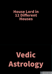 House lord in 12 Different Houses