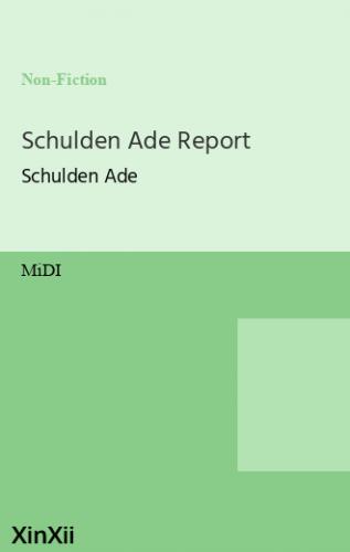 Schulden Ade Report