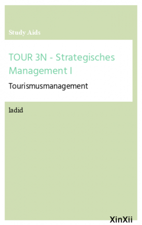 TOUR 3N - Strategisches Management I
