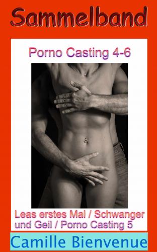 Porno Casting: Sammelband 4-6: Erotische Geschichten