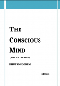 The Conscious Mind
