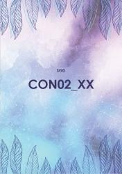 CON02 Controlling (SGD/ILS)
