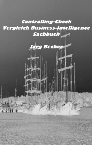 Controlling-Check Vergleich Business Intelligence