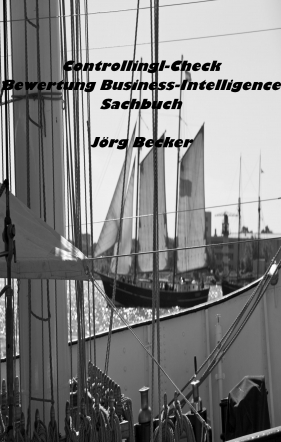 Controlling-Check Bewertung Business Intelligence
