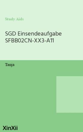 SGD Einsendeaufgabe SFBB02CN-XX3-A11