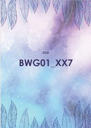 BWG01 Betriebswirtschaftliche Grundlagen (SGD/ILS)