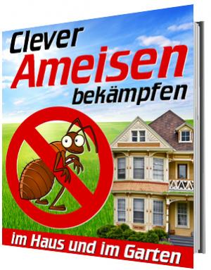 Clever Ameisen bekämpfen - im Haus und im Garten