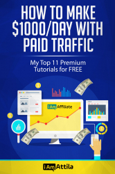 How To Make $1000/Day With Paid Traffic, Facebook Ads, Google