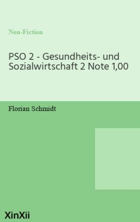 PSO 2 - Gesundheits- und Sozialwirtschaft 2 Note 1,00