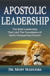 Apostolic Leadership