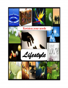 Envision Your Needs Lifestyle