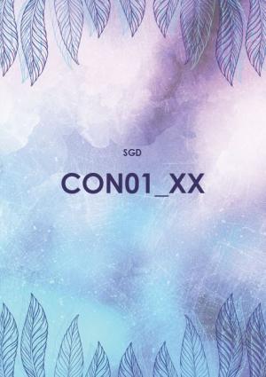 CON01 Controlling (SGD/ILS)