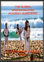 The Global Shorinkenjitsu Academy Guide Book.